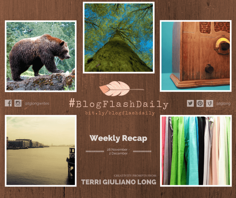 #BlogFlashDaily Creativity Prompts Weekly Recap: 28 November to 2 December