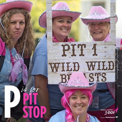 Pit Stop Susan G Komen 3 Day Breast Cancer Walk