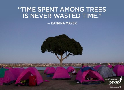 Time spent among trees is never wasted.