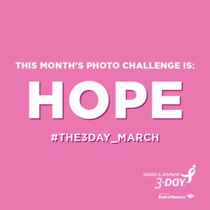 susan g. komen 3-Day breast cancer walk 60 miles instagram photo challenge