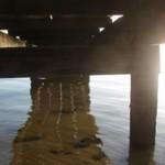 web-dock