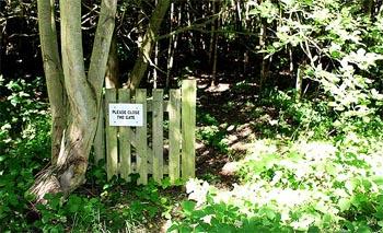 Close the gate.jpg