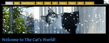 Even More Snow