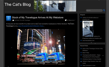 Snow on Blog