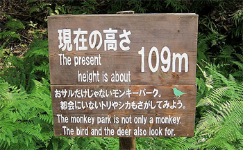 When Is A Monkey park Not A Monkey Park When It s In Japan