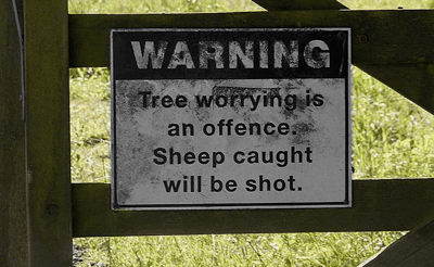 What Have Sheep Got Against Trees