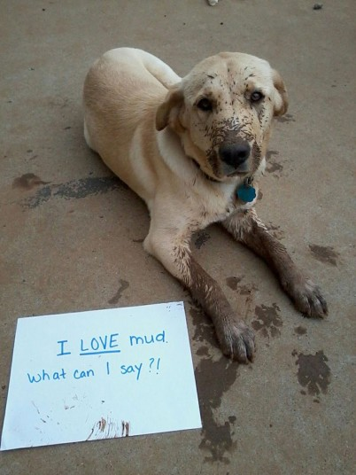 I love mud what can I say