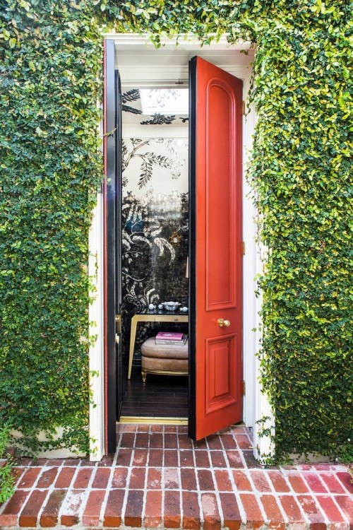 Statement Doors Red Outside Black Inside Mini Double Front Exterior Door Ivy Facade