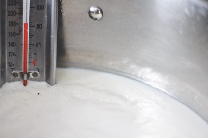 Homemade Ricotta Cheese-- The Everyday Chef and Wife