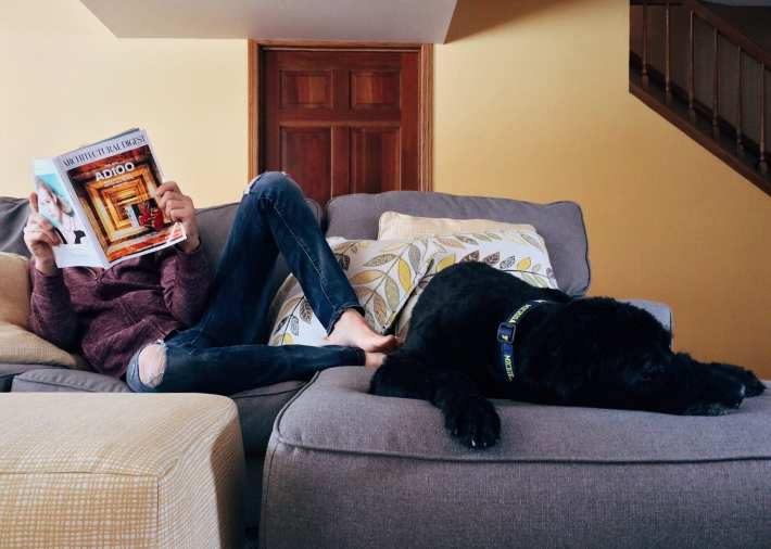 A young person lounging on a couch reading a magazine. A dog is resting at their feet.
