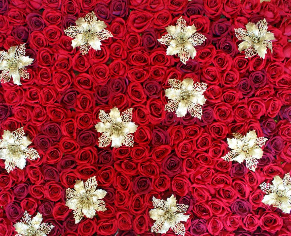 christmas flower wall