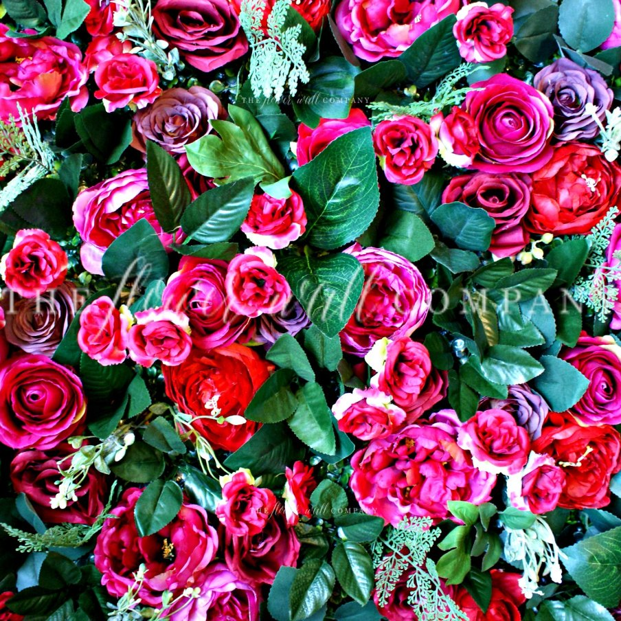 flower wall, where to buy a flower wall, flower wall sale, flower wall hire, flower wall sydney, christmas flower wall