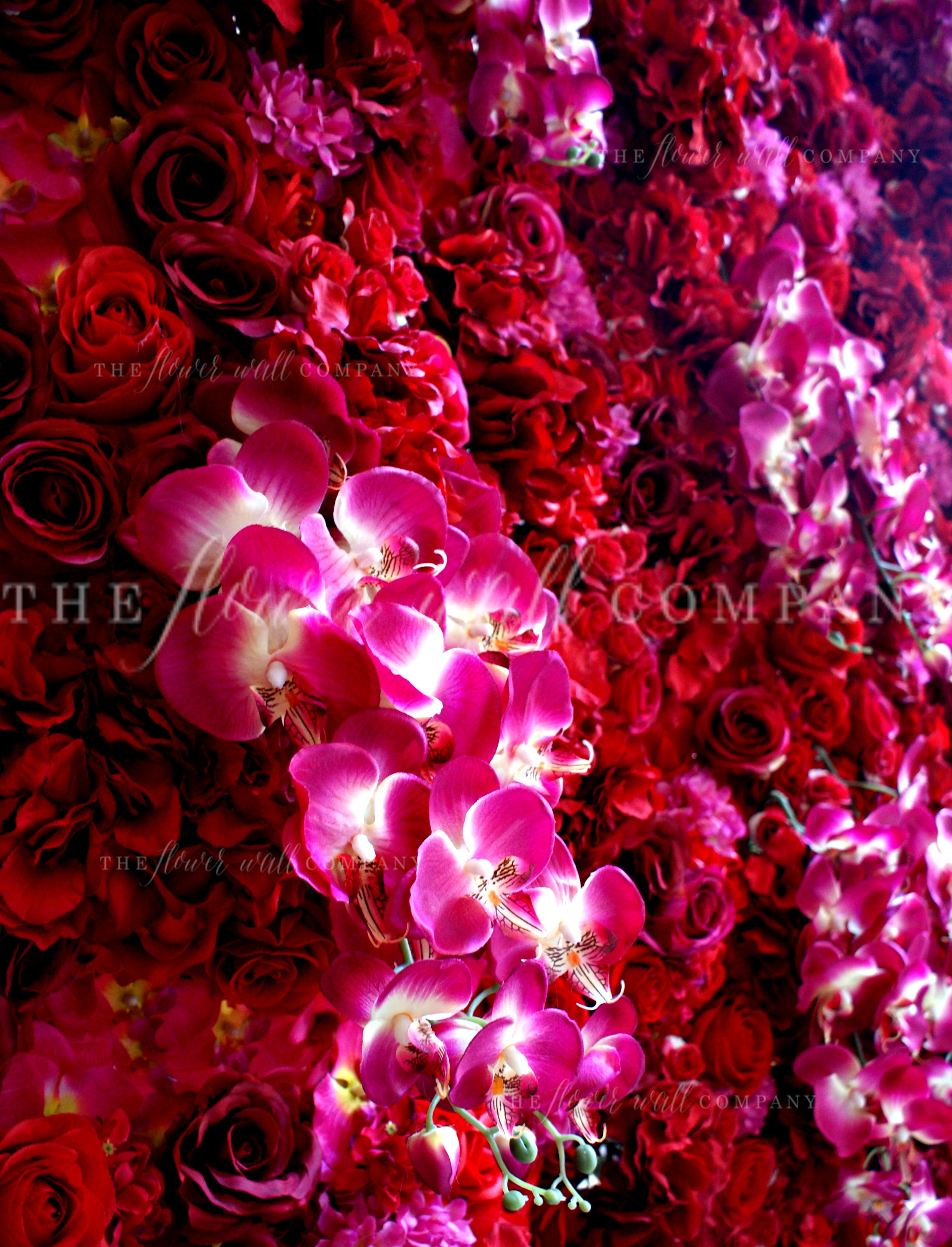 The flower wall company creating reusable easy to construct and miss ruby flower wall dhlflorist Gallery