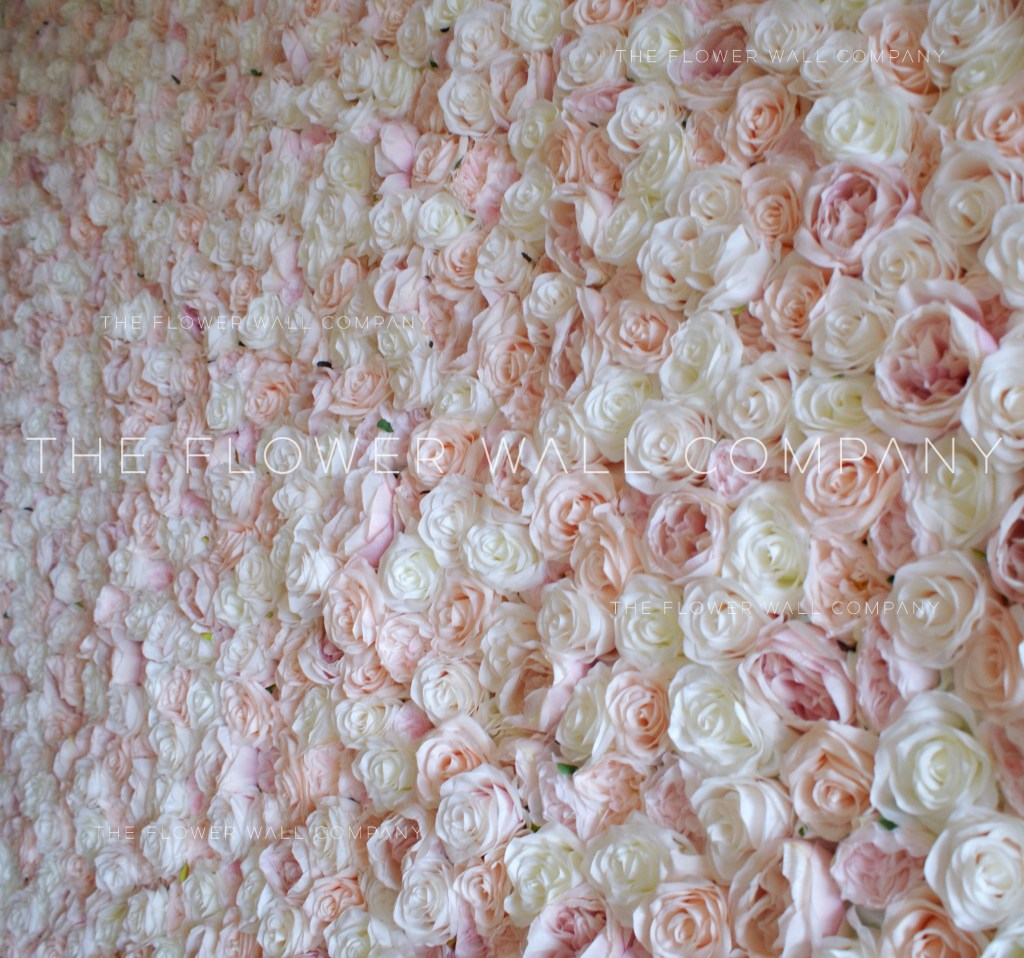 cheap blush flower wall