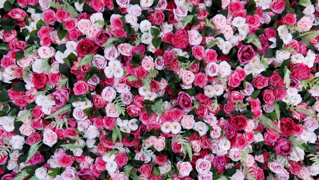 front view pink flower wall on sale