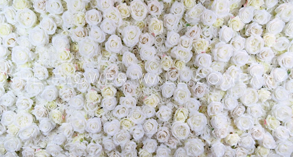 Classic Cream Flower Wall