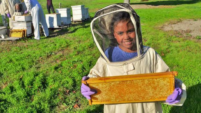 A young girl in beekeeping gear is seen holding a hive block