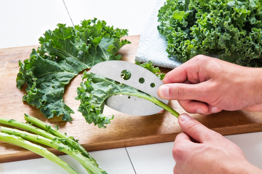 A person is seen cutting kale off the stem with a Raw Rutes kale razor