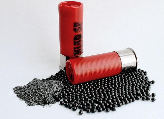 Image result for 20 gauge shotgun bullet pellets
