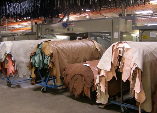 skin or hide over a steel roller machine