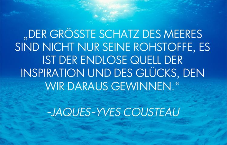 Cousteauzitat