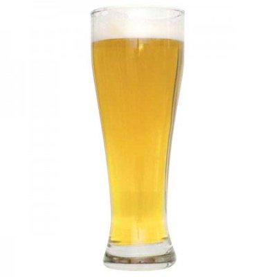 Pilsner beerhead 101