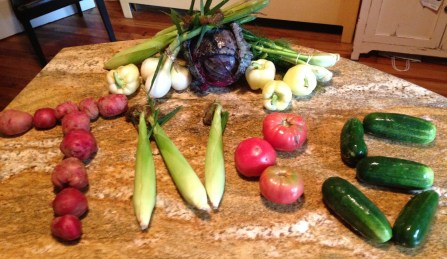 Potatoes, corn, tomatoes, and cukes spell TNCS: onions, purple cabbage, fennel, and green peppers occupy the background.