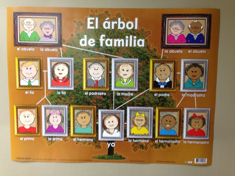 Family-tree-in-Spanish