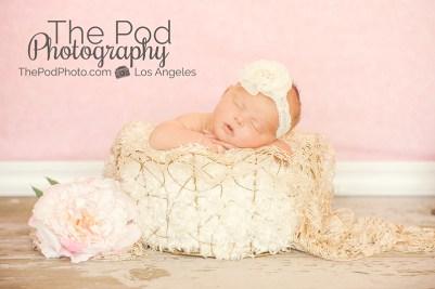 girly-newborn-baby-photos