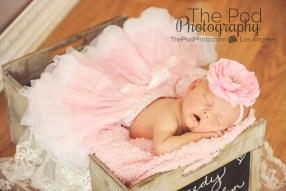 newborn-baby-pink-tutu-photography
