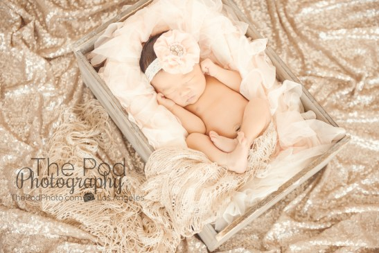 champagne-sequens-baby-in-box-photographed-from-above