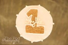 SusieCakes-Custom-Smash-Cake-Pink-And-Gold-First-Birthday-Portraits