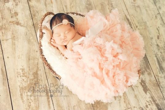 top-newborn-photographers