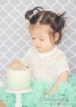 custom-smash-cake-baby-photos
