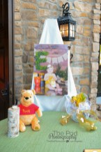 party-details-winnie-the-pooh-theme-first-birthday-party-photographer-los-angeles-the-pod-photography