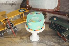 smash-cake-susiecakes-west-los-angeles-photography-studio