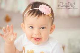 adorable-first-birthday-portraits