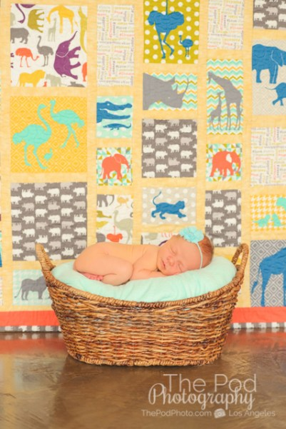 animal-quilt-baby-in-a-basket