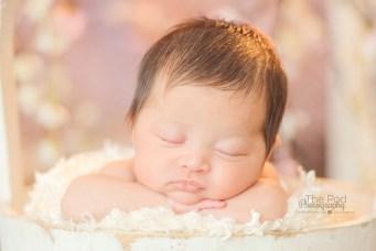 infant-asleep-in-milk-bucket