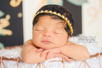 gold-black-and-white-infant-styling
