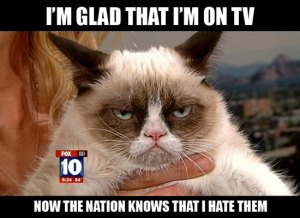 on-tv-grumpy-catmemes