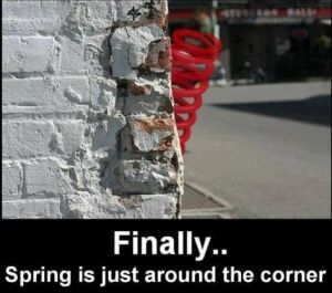 spring-around-the-corner1