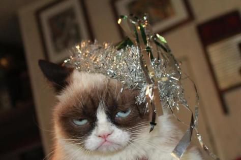 42152-A-very-Grumpy-Cat-New-Years-Ev-Wpx9