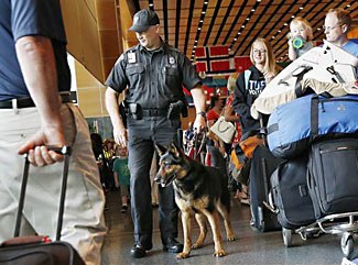 Are dogs an effective form of airport security?  The answer (below) might surprise you.