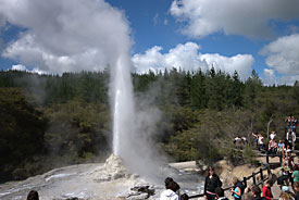 See geysers and other exciting geothermal activity in Rotorua