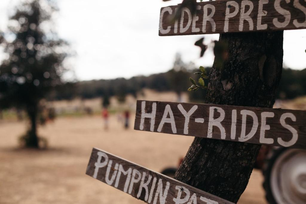 A sign on a tree for a cider press, hay rides, and a pumpkin patch.