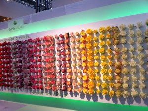 A Dulux colour chart of roses