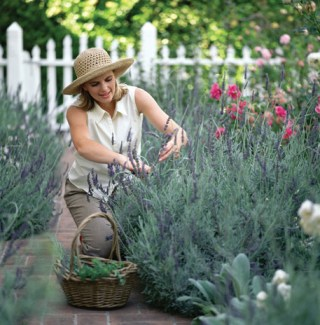 Gardening best for job satisfaction