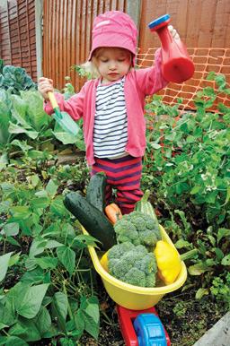 Phil Beckett, winner 'Vegetables & Fruit' category