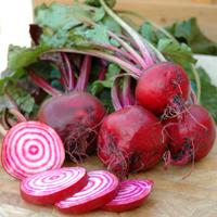 Beetroot - the versatile wonder-veg